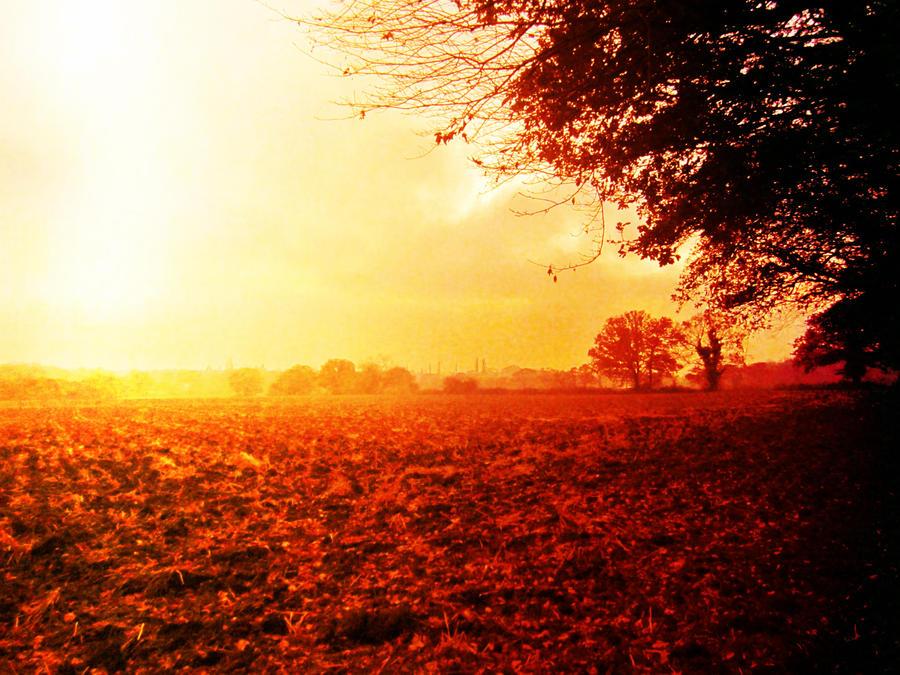 Autumn... by Babycakes551
