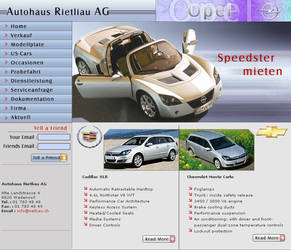 web interface for a car dealer by vinkrins