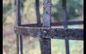 Cage by MoxieBlacksmith