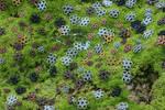 wire flowers by MoxieBlacksmith