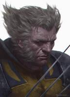 Wolverine by kamiyamark