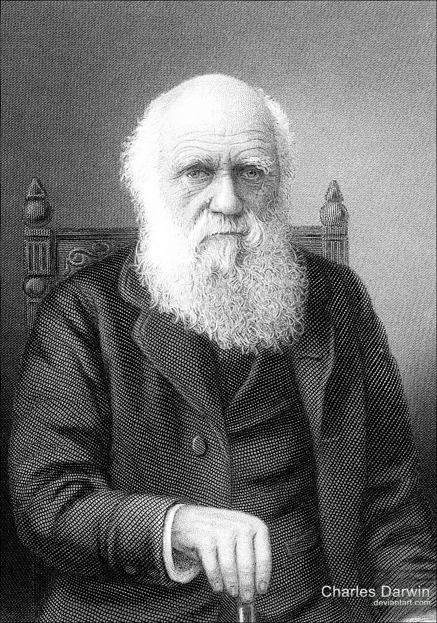 understanding the concept behind charles darwins natural selection Find helpful customer reviews and review ratings for charles darwin's on the origin of species: a graphic adaptation  from evolution to natural selection, darwin.