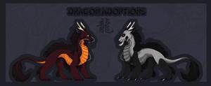 Dragon Adoptables