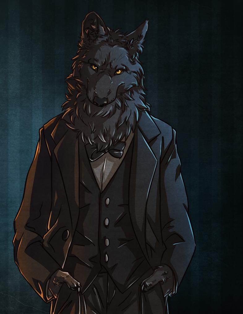 Black wolf furry - photo#18