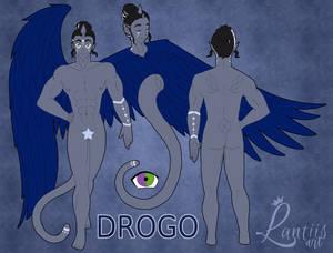 Payment 1-2 Drogo