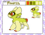 Mantis Approval