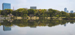 Hamarikyu Garden in Tokyo, Japan