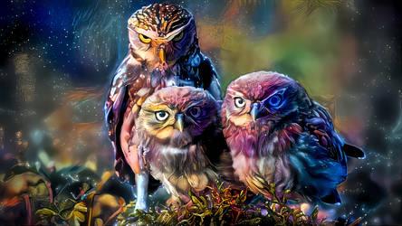 Galactic Owls