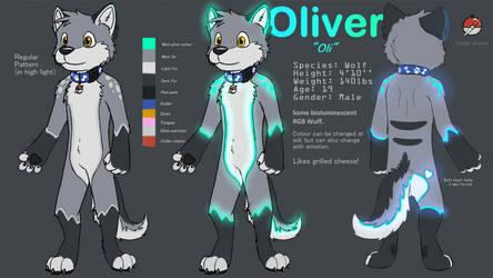 Oliver's ref sheet by Asurium