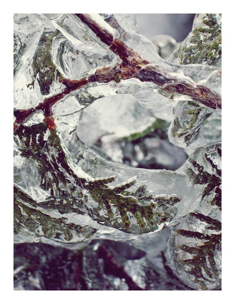 Frozen ground by wooplyy