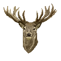 Pixel Deer Avatar by ReshiANW