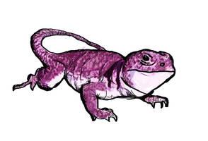 Big Pink Lizard by prudentia