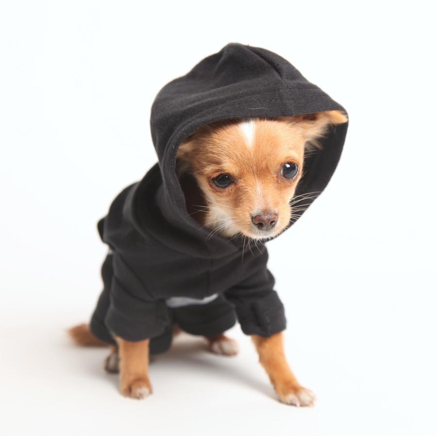 Crossbrush Doggie Hoodie by DeviantArtGear