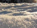 Landscape of frost by Castlemoor-stock