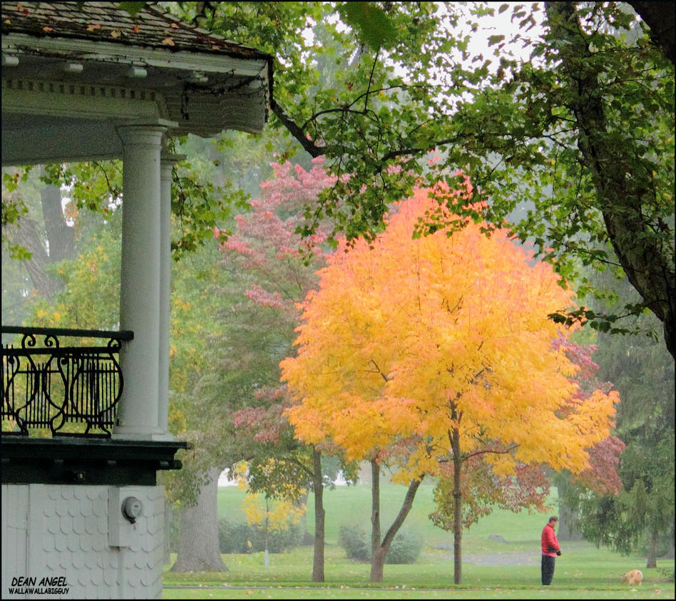 Colors by the band stand by wallawallabigguy