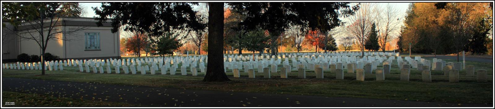 Veterans Day 2014 by wallawallabigguy