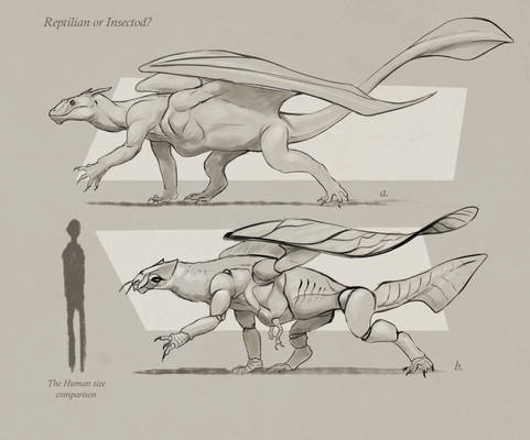The Sketch of Dragon Forms