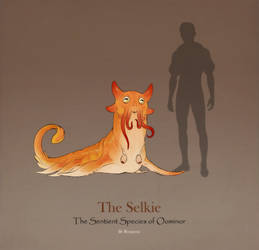 Fantasy Race: The Selkie