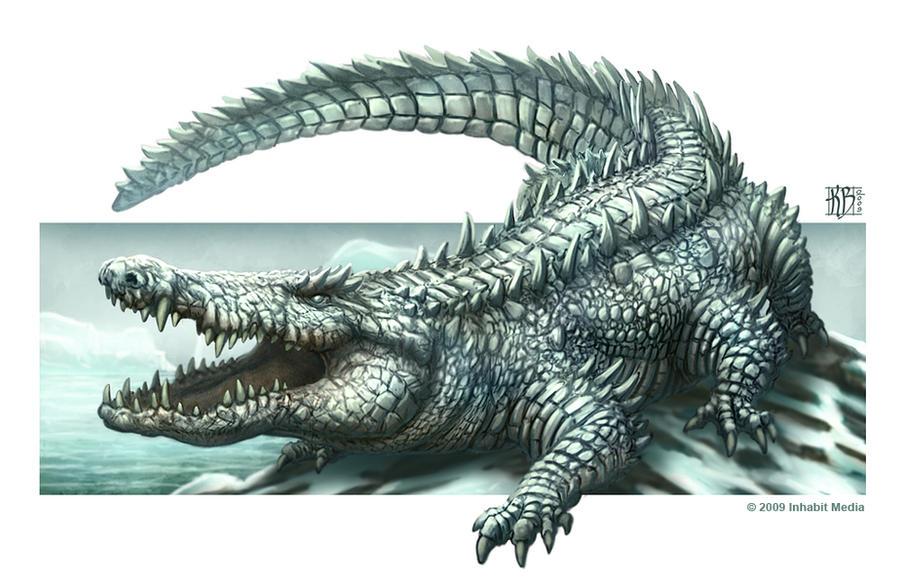 Inuit Croc