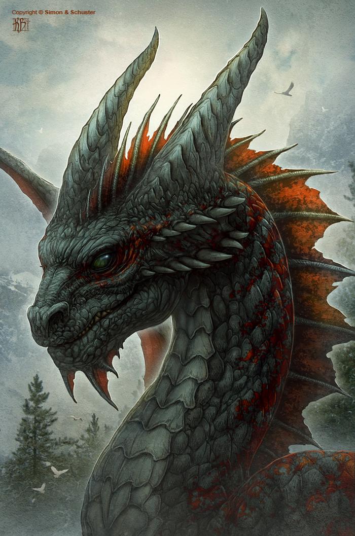 Dragon S Crown Gets New Character Art Screens Tarot: Dragons