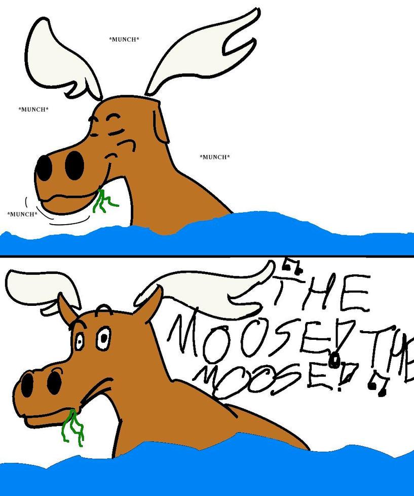 Crazy Moose Song Lyrics | buubug