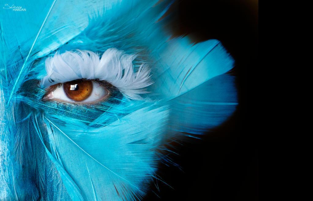 Bird by Shireen-Hardan