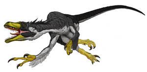 Dromaeosaurus Detail I