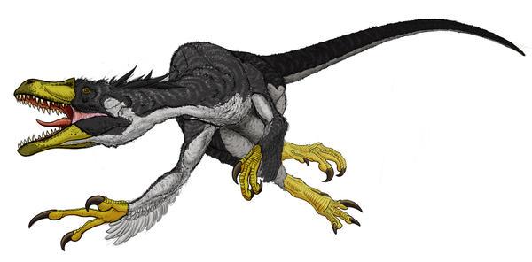 [Image: Dromaeosaurus_Detail_I_by_Art_Minion_Andrew0.jpg]
