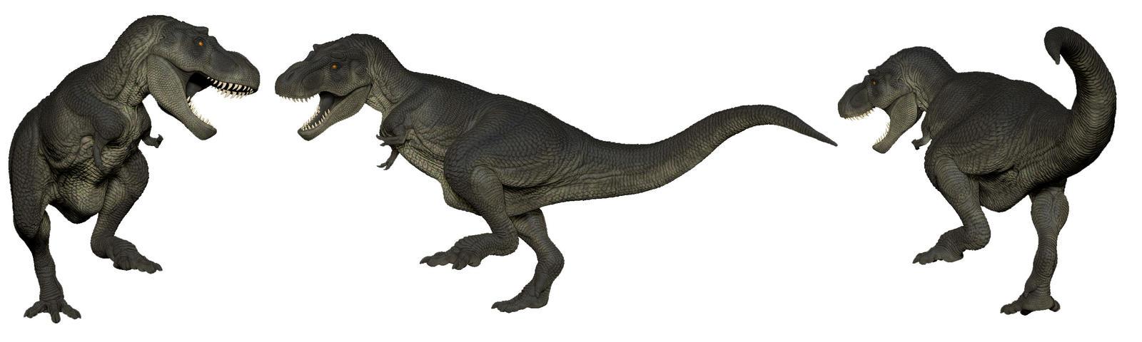 T Rex Posed