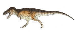 T Rex Design