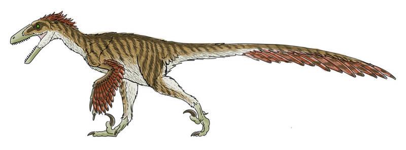 Deinonychus Colors