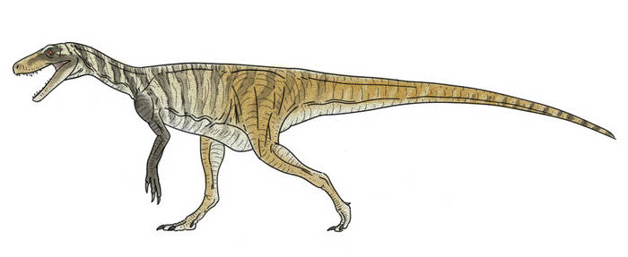Herrerasaurus Colors