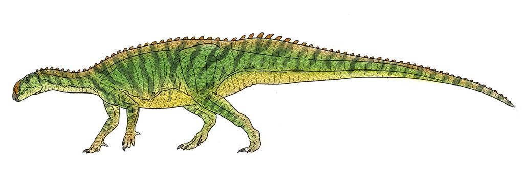 Tenontosaurus Colors