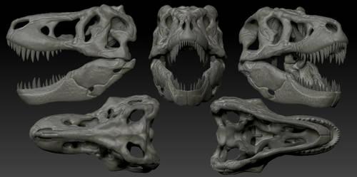 T Rex Skull 3D