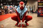 Scarlet Spider - C2E2