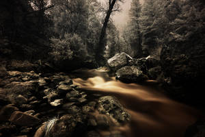 The River by coulombic
