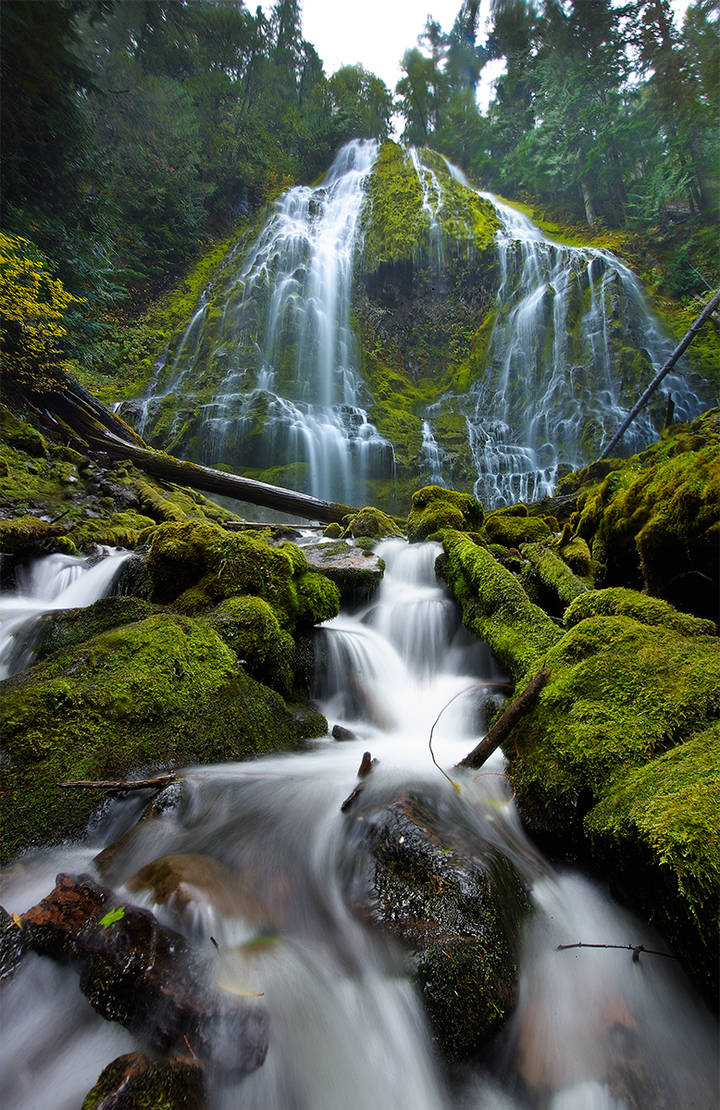 Lower Proxy Falls by coulombic