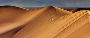 The Eureka Dunes