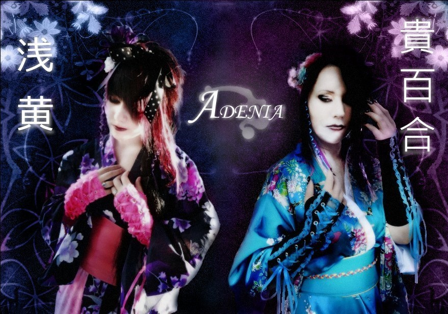 ADENIA - New Look 2012 by penetrating-surfaces