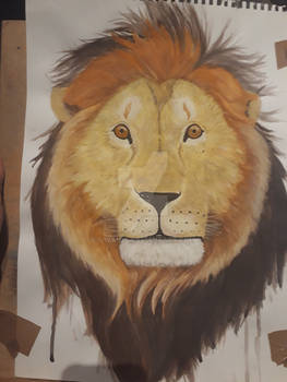 Lion in aquarelle