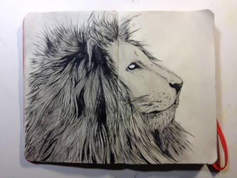 Sketchbook: Mane King