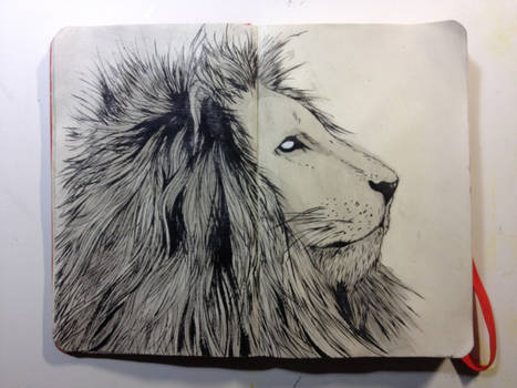 Sketchbook: Mane King