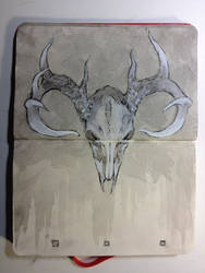 Sketchbook : Cervus