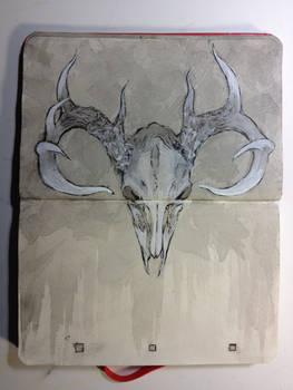 Sketchbook : Cervus