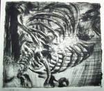 Skeleton etching