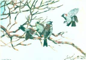 Birdies by BopBob