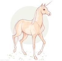 Unicorn by Naimly