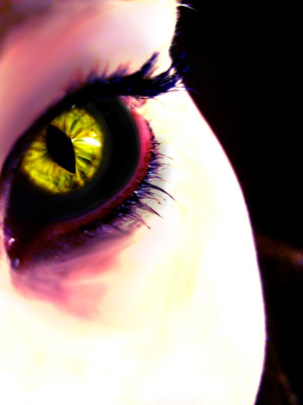 Demon Eyes Related Keywords - Demon Eyes Long Tail ...