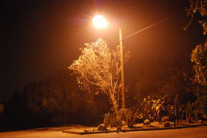 Street Lamp 02 by Sageous