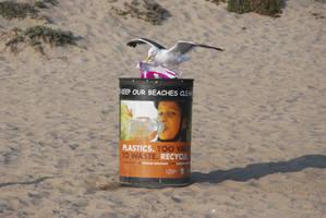 Keep Our Beaches Clean 01 by Sageous